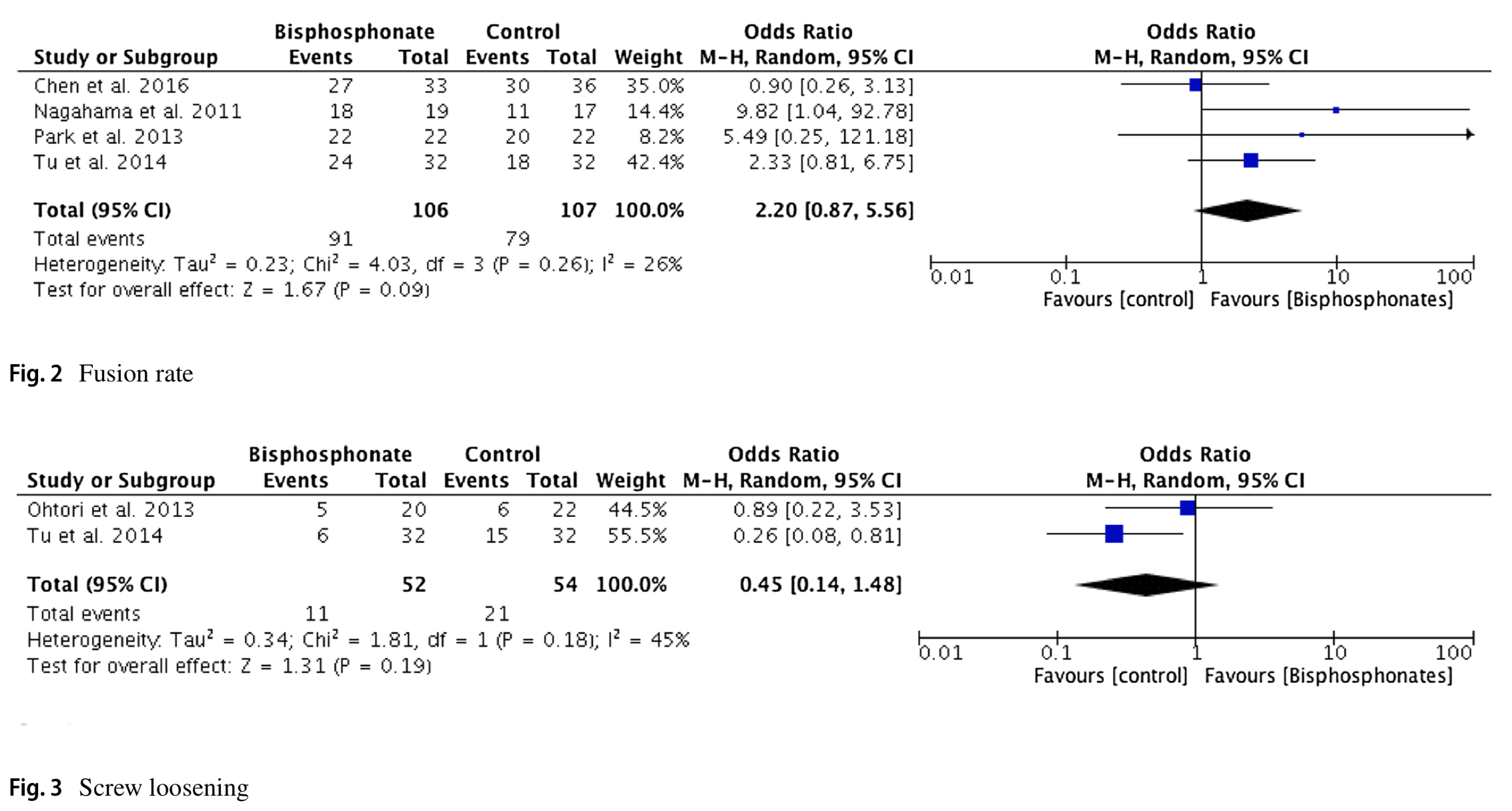 Radiographic and functional outcomes of bisphosphonate use in lumbar fusion: a systematic review and meta-analysis of comparative studies