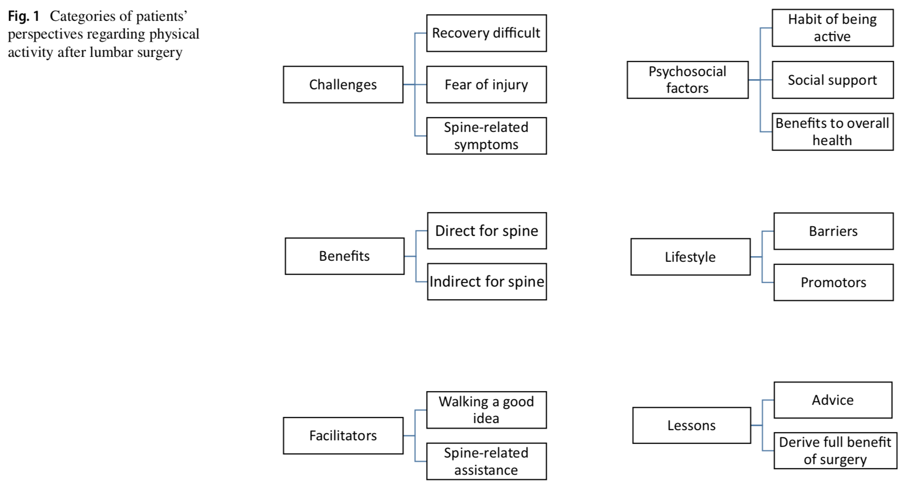 Qualitative assessment of patients' perspectives and willingness to improve healthy lifestyle physical activity after lumbar surgery